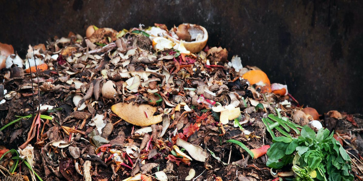 Surprising compostable packaging facts